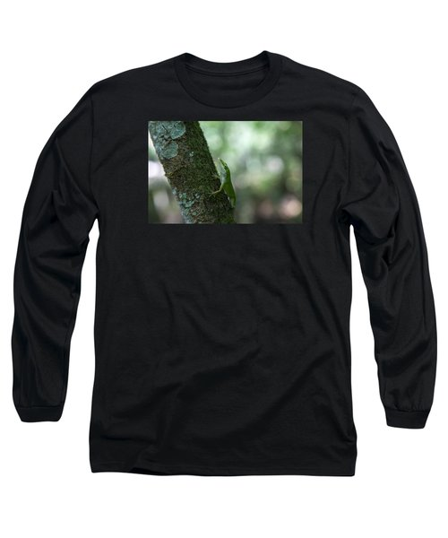 Green Anole Long Sleeve T-Shirt by Christopher L Thomley