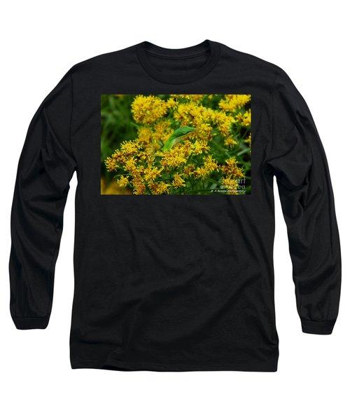 Green Anole Hiding In Golden Rod Long Sleeve T-Shirt