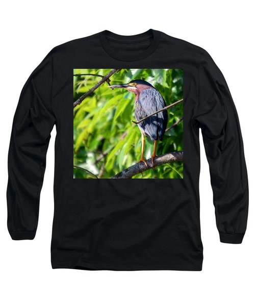 Green Heron Long Sleeve T-Shirt by Sumoflam Photography