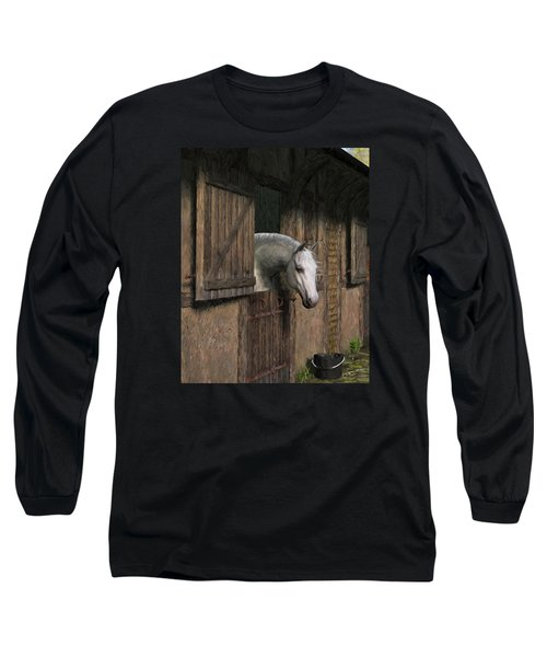 Grey Horse In The Stable - Waiting For Dinner Long Sleeve T-Shirt