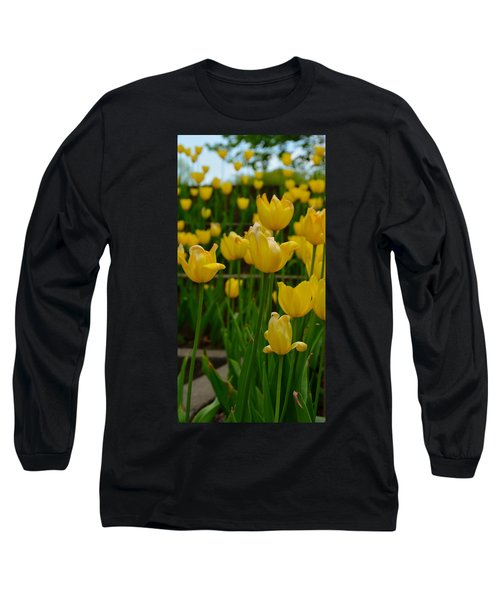 Grouping Of Yellow Tulips Long Sleeve T-Shirt