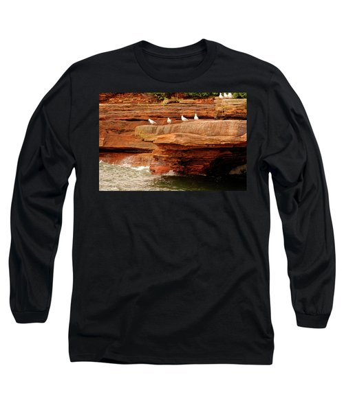 Gulls On Outcropping Long Sleeve T-Shirt