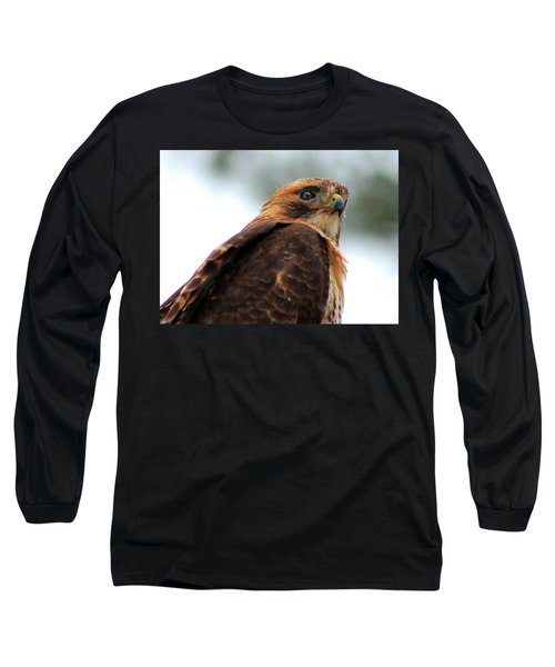 Hawk Long Sleeve T-Shirt by Bruce Patrick Smith