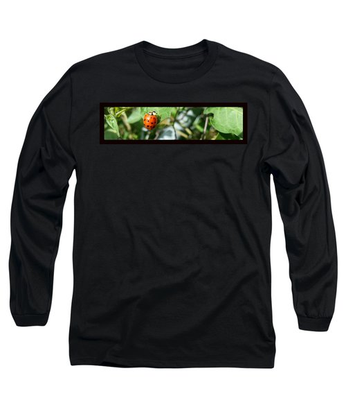 Long Sleeve T-Shirt featuring the photograph Hello Lady by Robert Knight