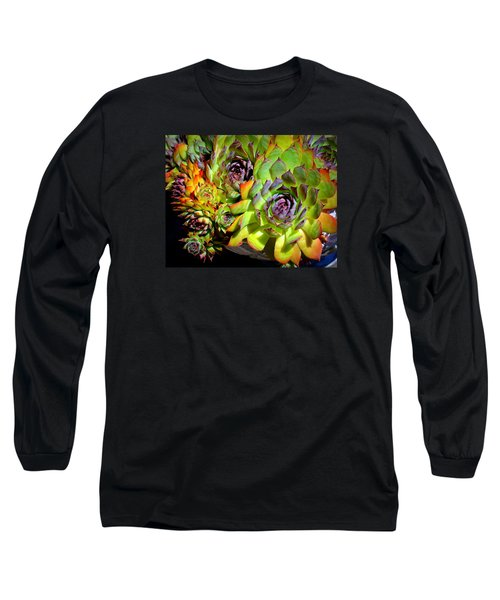 Hens 'n Chicks Long Sleeve T-Shirt