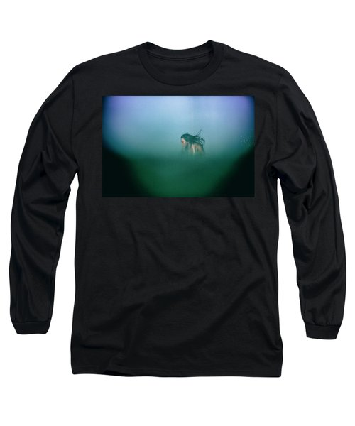 Hidden Long Sleeve T-Shirt