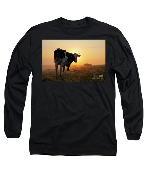 Holstein Friesian Cow Long Sleeve T-Shirt