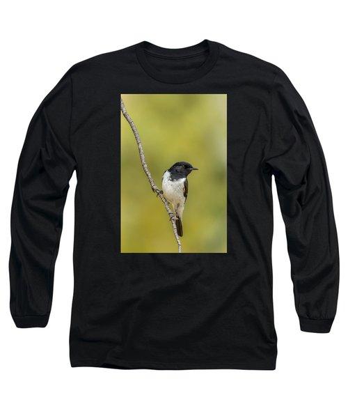 Hooded Robin Long Sleeve T-Shirt