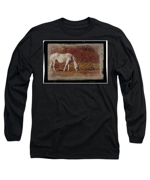 Horse Grazing Long Sleeve T-Shirt