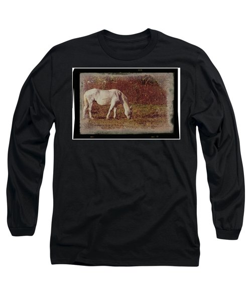 Horse Grazing Long Sleeve T-Shirt