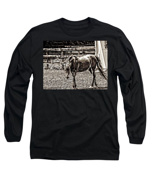 Horse In Black And White Long Sleeve T-Shirt by Annie Zeno