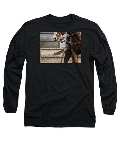 Horse In Hackamore Long Sleeve T-Shirt