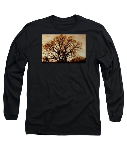 Horse In The Willows Long Sleeve T-Shirt by Rena Trepanier