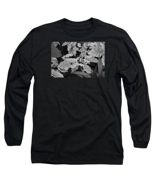 Hosta Bw - Pla363 Long Sleeve T-Shirt by G L Sarti