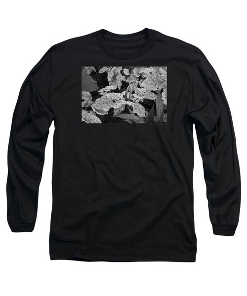 Hosta Bw - Pla363 Long Sleeve T-Shirt