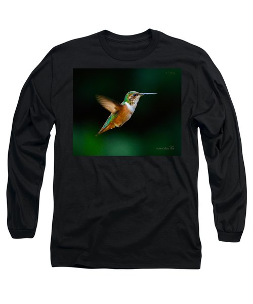Hovering Allen's Hummingbird Long Sleeve T-Shirt