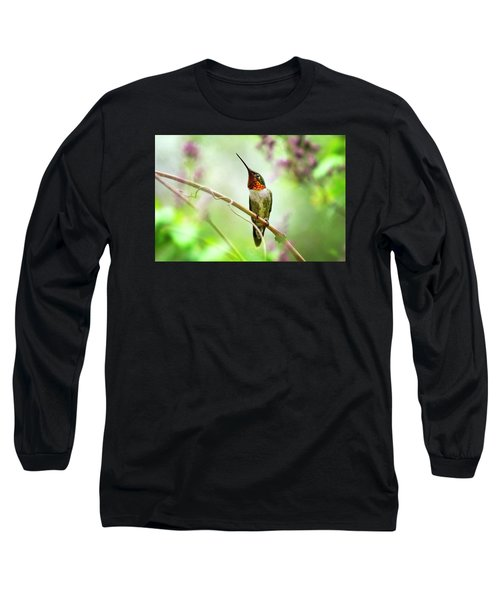 Hummingbird Looking For Love Long Sleeve T-Shirt