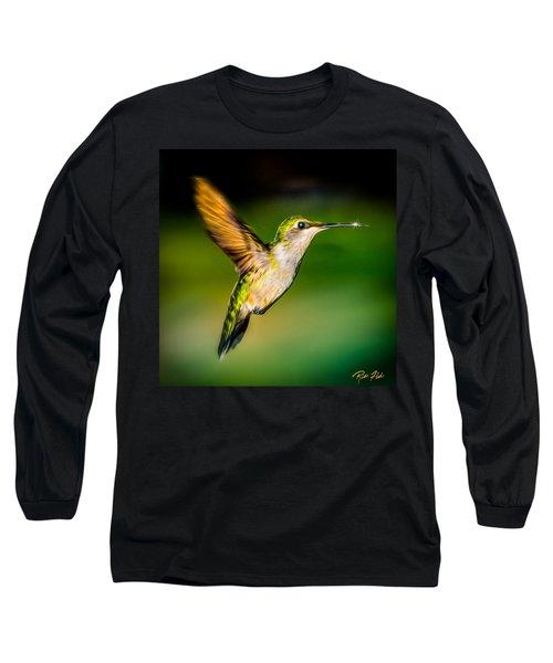 Hummingbird Sparkle Long Sleeve T-Shirt