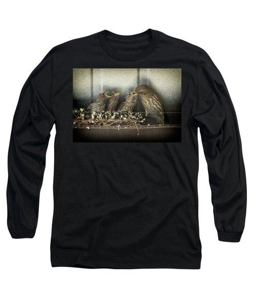 Hungry Chicks Long Sleeve T-Shirt by Alan Toepfer