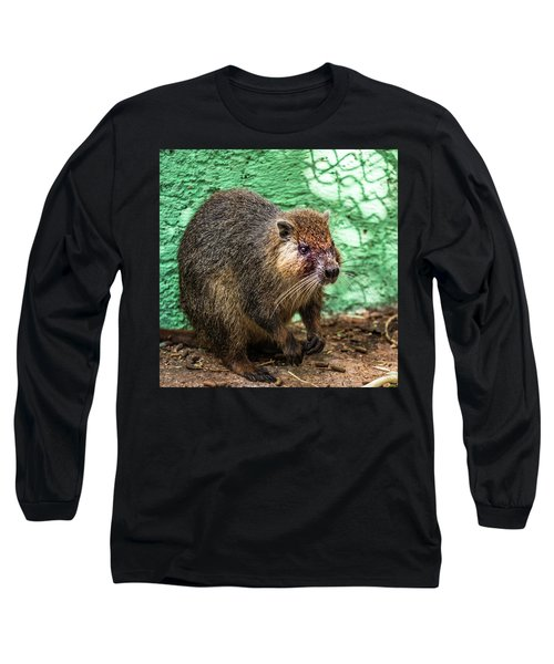 Hutia, Tree Rat Long Sleeve T-Shirt