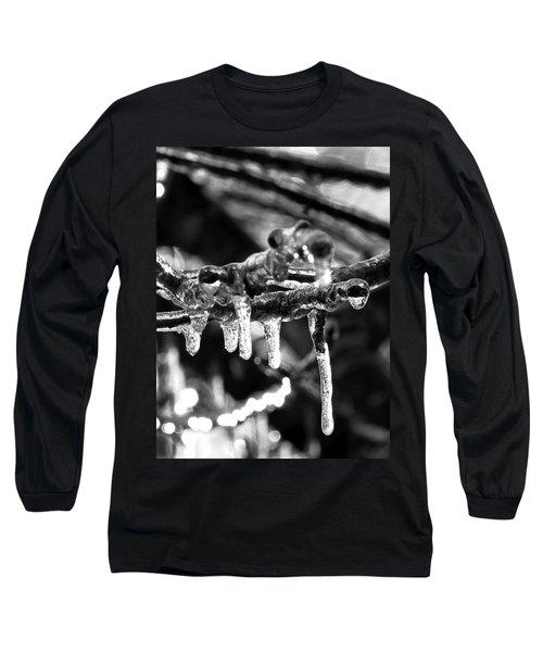 Ice, Ice Baby Long Sleeve T-Shirt