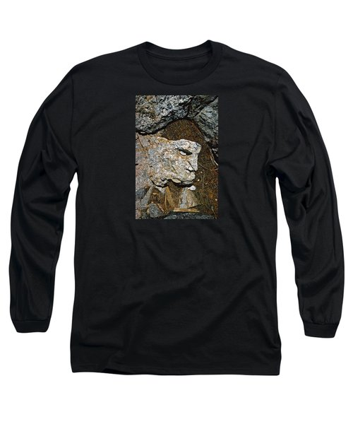 If Looks Could Grill Long Sleeve T-Shirt