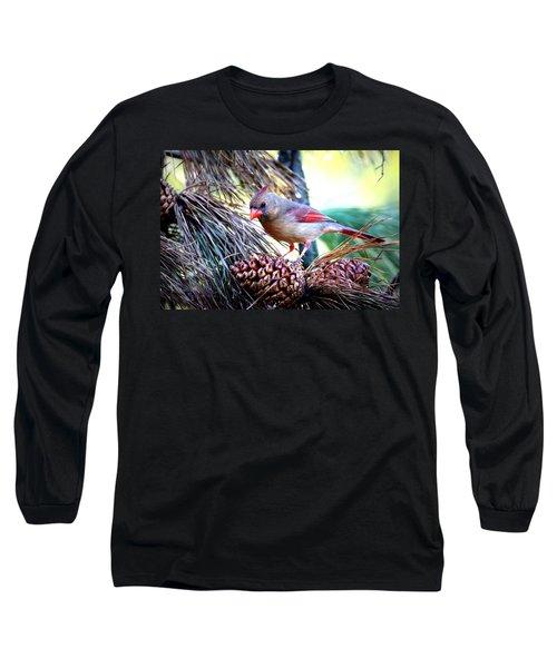 Img_0311 - Northern Cardinal Long Sleeve T-Shirt by Travis Truelove