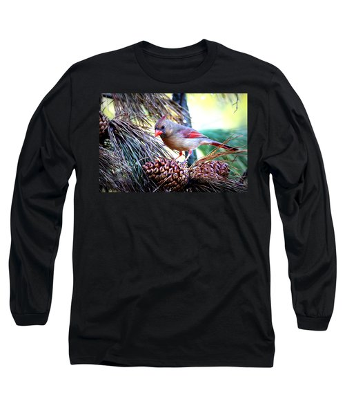Img_0311 - Northern Cardinal Long Sleeve T-Shirt