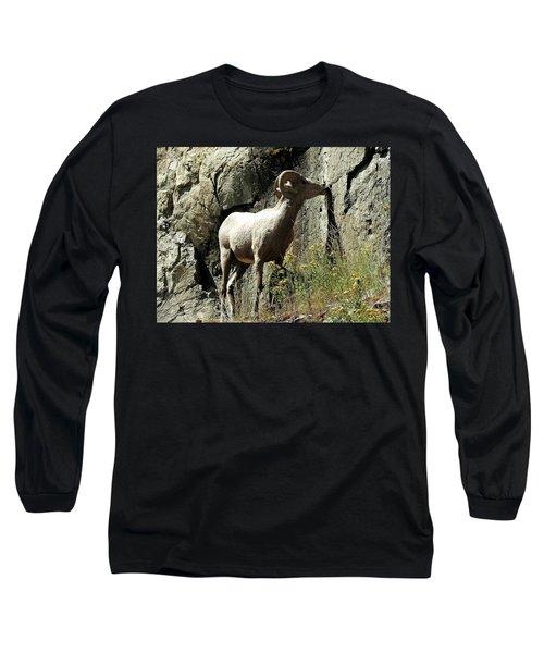 Irish Ram Long Sleeve T-Shirt