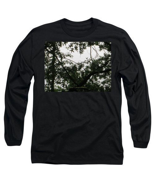 Is This My Heart? Long Sleeve T-Shirt