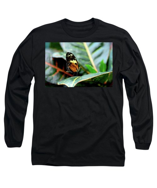 Ismenius Tiger Butterfly-2 Long Sleeve T-Shirt
