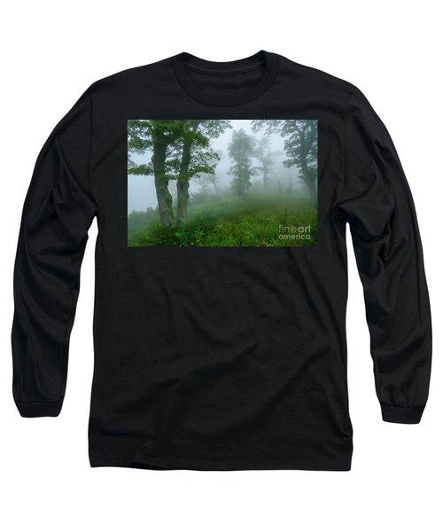 Jewell Hollow Overlook Long Sleeve T-Shirt