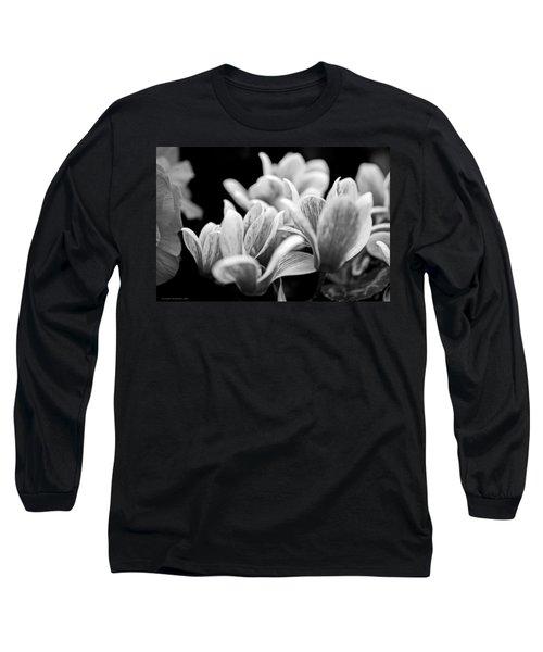 Joyous Long Sleeve T-Shirt