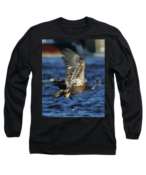 Juvenile Bald Eagle Over Water Long Sleeve T-Shirt by Coby Cooper
