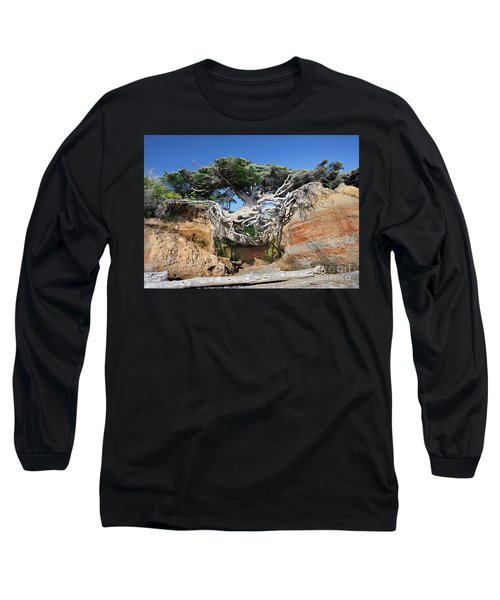 Kalaloch Tree Of Life Long Sleeve T-Shirt