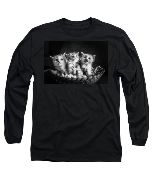Kitten Trio Long Sleeve T-Shirt