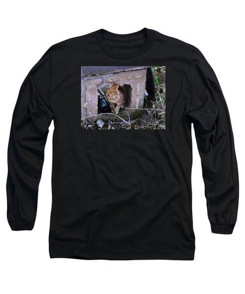 Kitten In The Junk Yard Long Sleeve T-Shirt by Larry Capra
