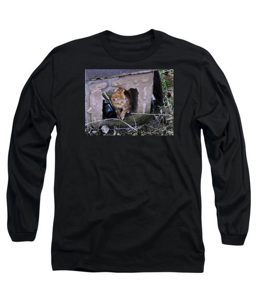Kitten In The Junk Yard Long Sleeve T-Shirt