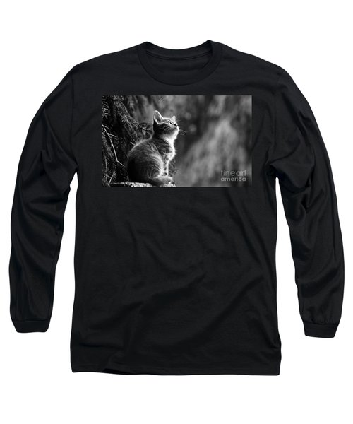 Kitten In The Tree Long Sleeve T-Shirt