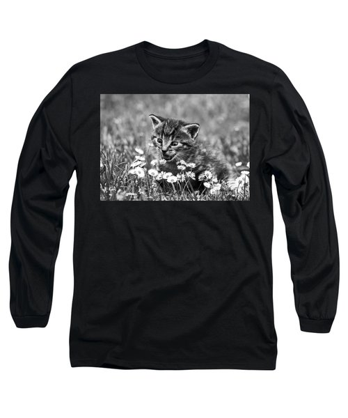 Kitten With Daisy's Long Sleeve T-Shirt