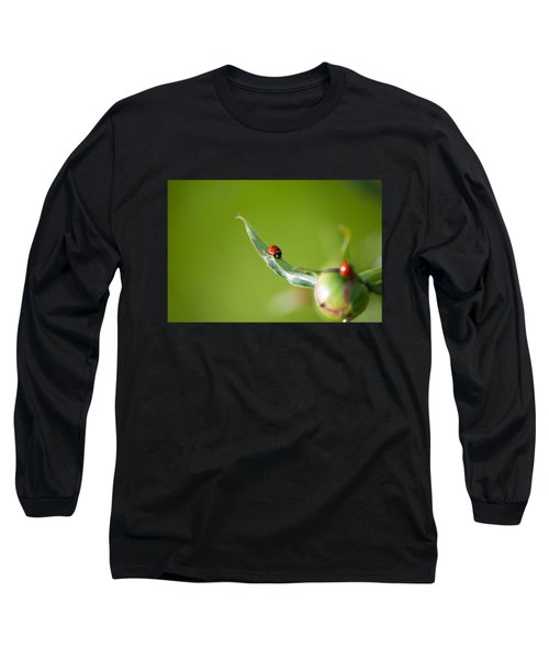 Ladybug On Flower Long Sleeve T-Shirt by Konstantin Sevostyanov