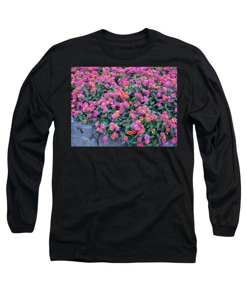 Lantana Long Sleeve T-Shirt by Betty Buller Whitehead