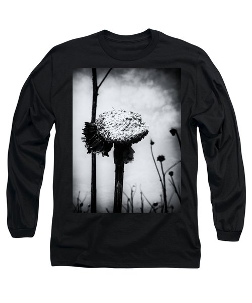 Last Years Beauty  Long Sleeve T-Shirt by Karen Stahlros