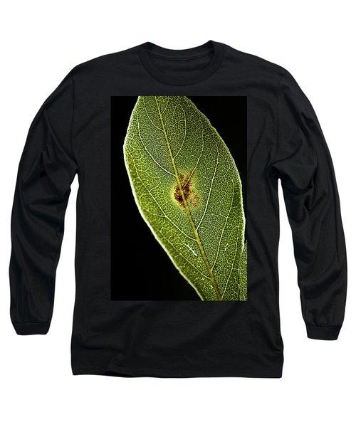 Leaf Long Sleeve T-Shirt