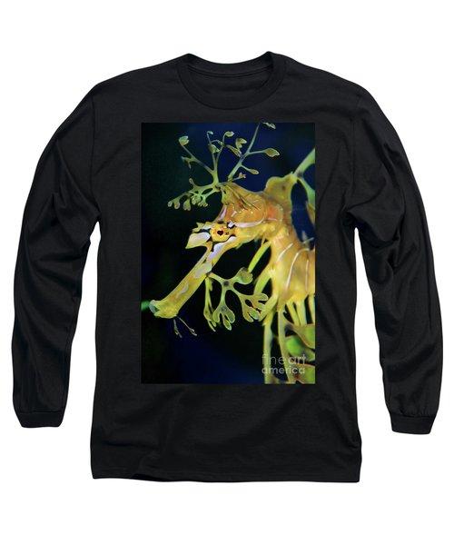 Leafy Sea Dragon Long Sleeve T-Shirt by Mariola Bitner
