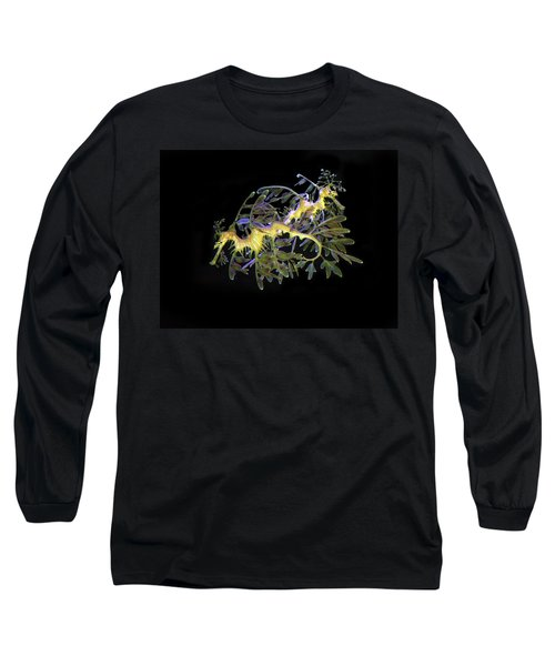 Leafy Sea Dragons Long Sleeve T-Shirt