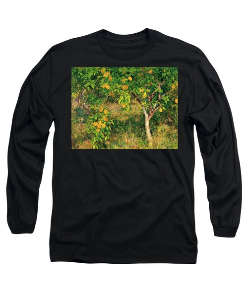 Long Sleeve T-Shirt featuring the painting Lemon Tree by Henry Scott Tuke