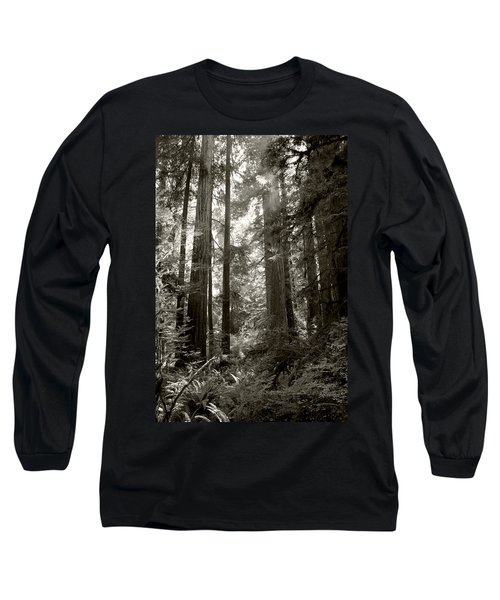 Light Through Redwoods Long Sleeve T-Shirt by Kathleen Grace