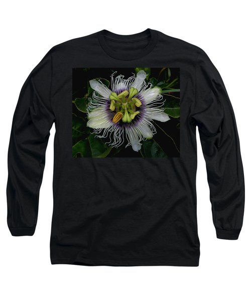 Lilikoi Passion Fruit Long Sleeve T-Shirt