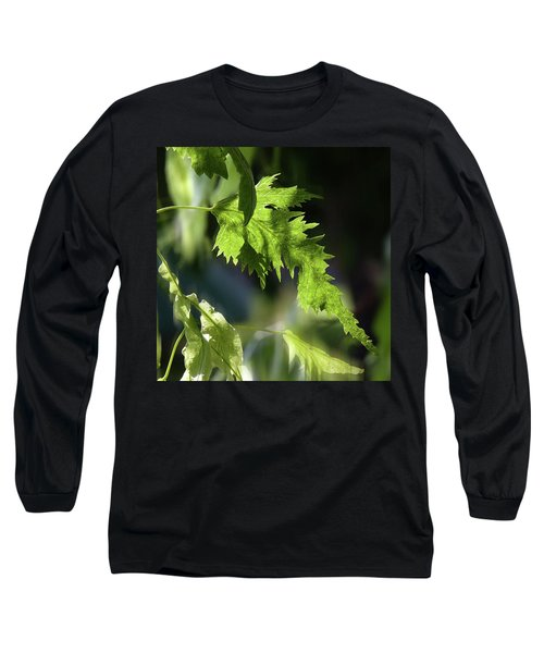 Linden Leaf - Long Sleeve T-Shirt